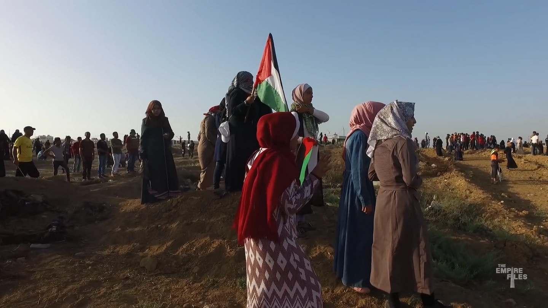 Gaza Fights 1